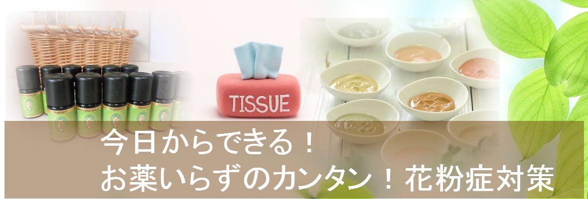 花粉症LP TOP